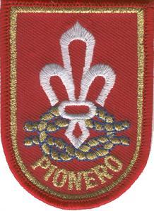 insignia-pionero