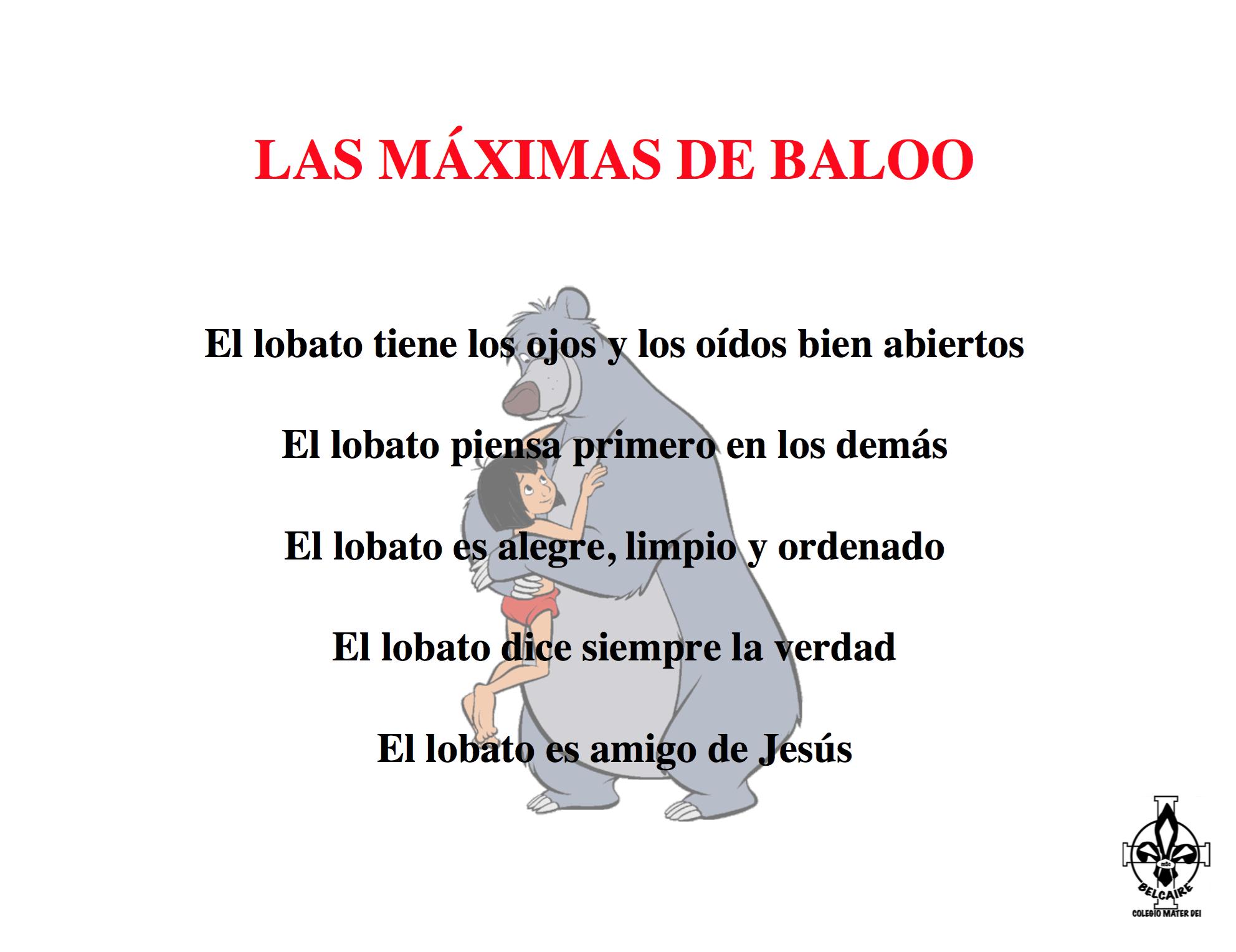 img-maximas-baloo
